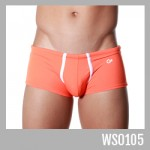 WS0105 - S